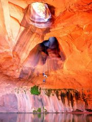 In Golden Cathedral, Neon Canyon, Utah