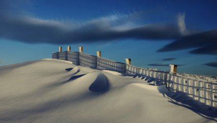Winter fence Ben Buck