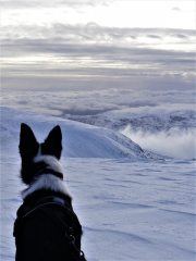 View from Helvellyn