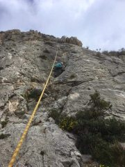 Lizzie on my new route :)