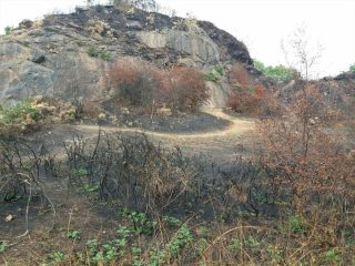 Markfield Quarry , it looks like a party fire started this one.
