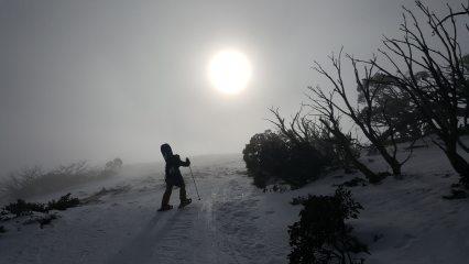 Kai Seth Robertson snowshoeing towards the summit of Mount Stirling (1749m), Victoria, Australia.