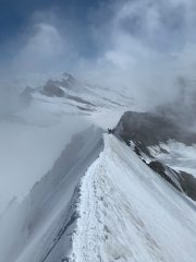 Summit ridge, Monch, Bernese Oberland, 179 kb