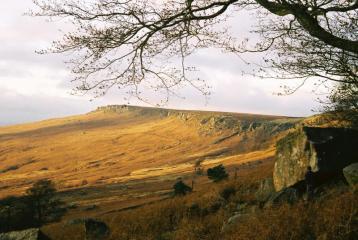 November bouldering at the Plantation