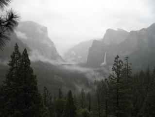 Yosemite in the rain