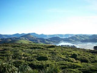 Coastline outside Dunedin, NZ