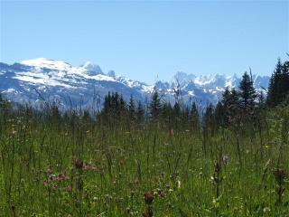 Mt Buet & the Aiguilles of Chamonix