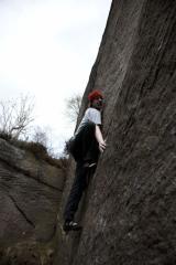 Acme wall