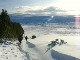 Powder bashing in the sunshine, Lower Cairngorms.